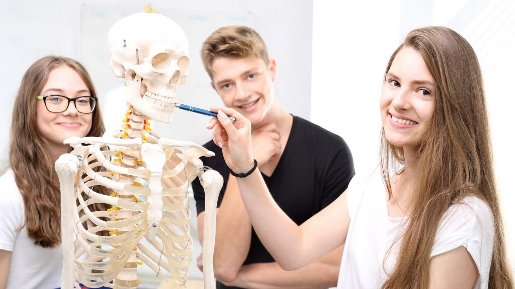 Ausbildung Medizinischer Masseuer Ars Manuum GmbH